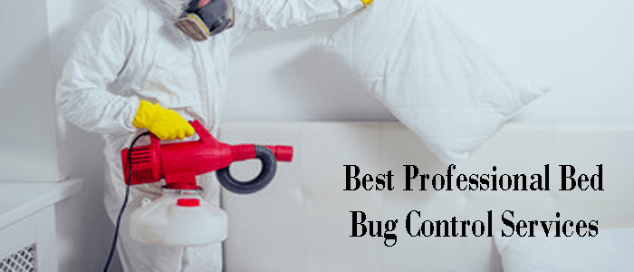 Best Professional Bed Bug Control Services